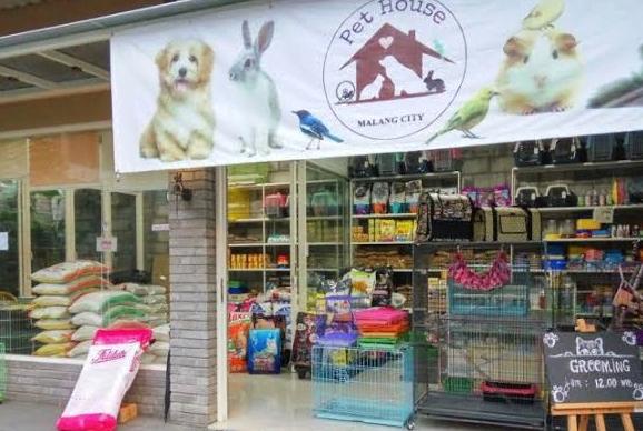 Usaha Pet Shop Modal 50 Juta